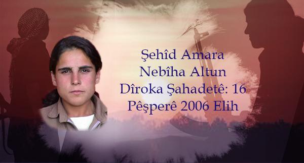 Şehîd Amara