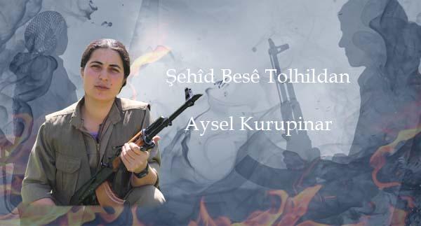 Şehîd Besê Tolhildan